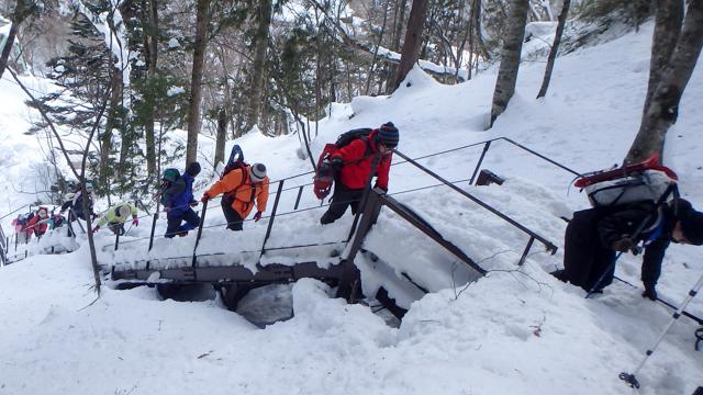Okukinu snowshoe 38