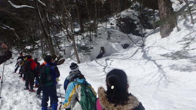 Okukinu snowshoe 72