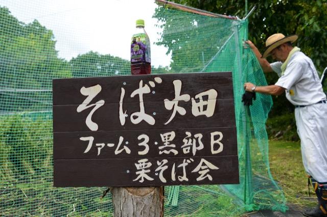 Kurisoba 39
