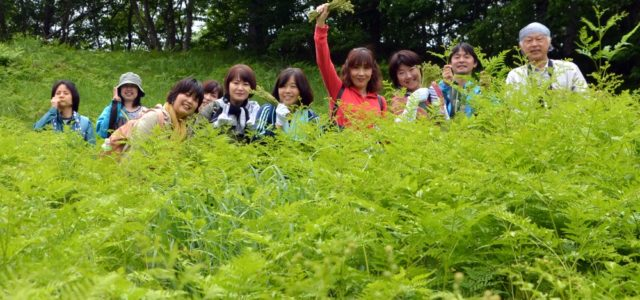 【ワラビ採り体験レポ】山菜女子歓喜!自然も、ワラビも、BBQも、全部がっつりイキました